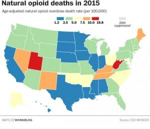 Opiod death utah